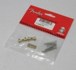 Fender Brass Telecaster Saddles.